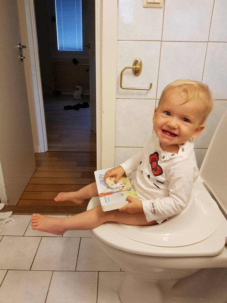 Potty training a toddler - (c) ipottytrain.com - I Potty train